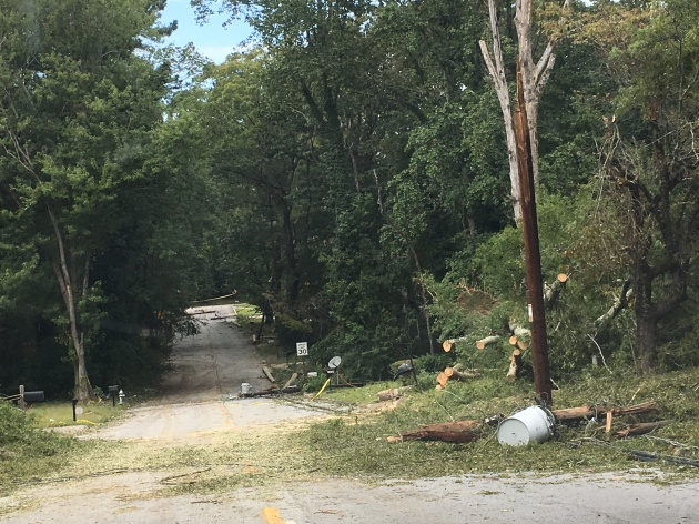 Just two blocks from APD'S Zone 4 Precinct, off Cascade Road are downed trees & power lines four days after Irma. This block is still without power.